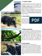 animales en peligro de extinsop.docx
