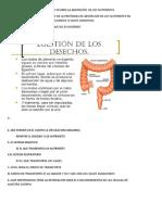 NUTRICION.doc