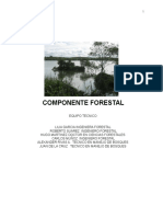 Informe Final Forestal Jun 27