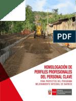 2019-006_ Homologacion de Perfiles