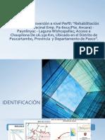 Estudio de Pre inversión a nivel Perfil.pptx