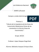 P1Campos..docx