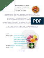 PI. FRUTA.docx