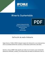 1535132523817_Mineria Sust.