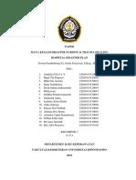Paper Hospital Disaster Plan NEW.docx