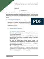 7 - Impacto Ambiental Pavina