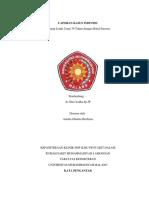 lapsus individu-PJR.docx