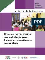 Comites-comunitarios-una-estrategia-para-fortalecer-la-resiliencia.pdf