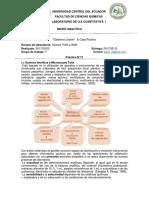 micro analíttica.docx