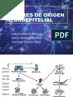 Tumores de Origen Neuroepitelial