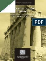 Argumentacion Juridica. Tecnica - Galindo Sifuentes, Ernesto.pdf