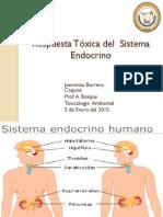 Respuesta Tóxica Del Sistema Endocrino-Jborrero