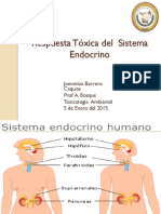 Respuesta Tóxica del  sistema endocrino-Jborrero.pdf