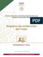 Registro de Evidencias Tutor 2019