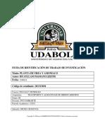 PROYECTO CULMINADO.docx