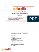 SIJ Presentation Slides.pdf