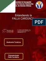 FALLACARDIACA2017.pdf