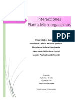 interaccion planta-microorganismo.docx