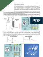 Soluciones-QPCR-protocolos