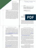 group_dynamics_rutan.pdf