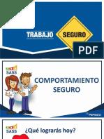 03 PPT Comportamiento Seguro-PLABR1L0100435
