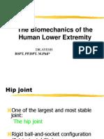 Lower Extremity Biomechanics 2018 Part 1