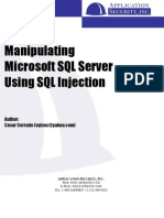 Manipulating SQL Server Using SQL Injection