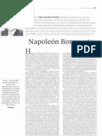 articulo Napoleón