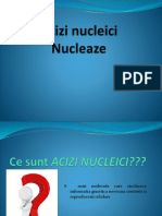 Acizi Nucleici -