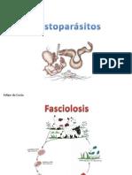 Histoparásitos