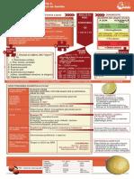 dz-plastifiata.pdf