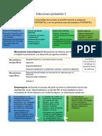 Infeccio perinatgales 1.docx