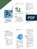 Leaflet Berat Bayi Lahir Rendah