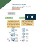 Fuentes de Informacióm Médica de la Medicina China