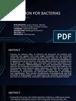 LIXIVIACION POR BACTERIAS.pptx