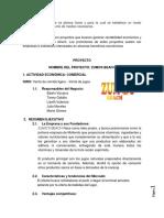 PROYECTO JUGUERIA.docx