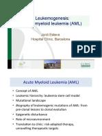 Moolecular features AML .pdf