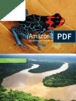 Amazonia Viva - Una década de descubrimientos