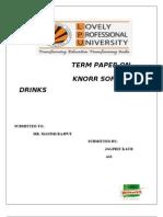 Knorr Market Term Paper 12