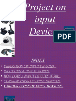 Input Output Ppt