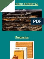 proceso forestal.pdf