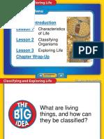 1-1 Life Summary