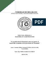 script-tmp-inta-ub-tesis-produccin-bioetanol-y-su-incidencia-eco.pdf