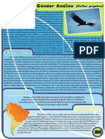 fichas aves.pdf