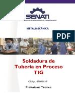 89001610 SOLDADURA DE TUBERÍAS EN PROCESO TIG.pdf