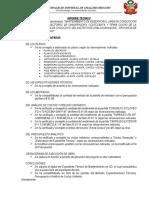 LEVANTAMIENTO DE OBSERVACIONES.docx