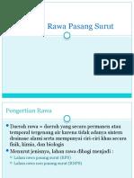 Daerah Rawa Pasang Surut