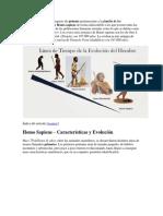 El Homo Sapiens es una especie de primate perteneciente a la familia de los homínidos.docx