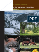 Safeguarding the Romanian Carpathian ecological network