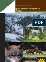 Safeguarding the Romanian Carpathian ecological network